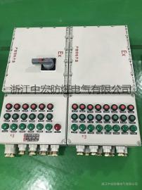 防爆照明(动力)配电箱 回路箱