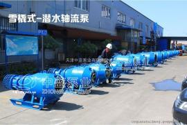 QZB大流量雪橇式��水�S流泵