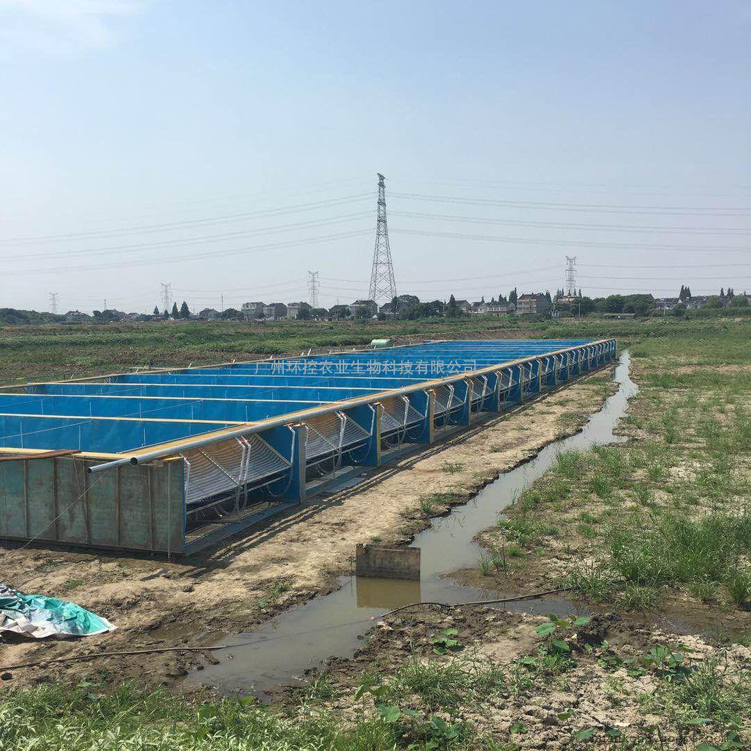 工厂化循环水养殖设备 工厂化养鱼系统模式