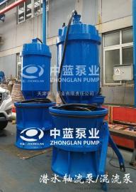 潜水混流泵----用于工矿船坞