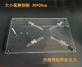 大小鼠 透明解剖板 手术台 现货