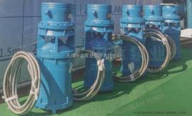 简易型中吸式轴流泵