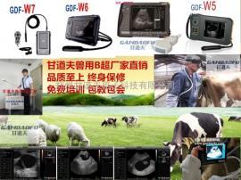 牛用B超动物B超厂家新报价表价格多少钱