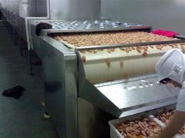 微波大虾烘烤机,对虾烘干熟化机