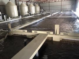 小型工厂化循环水养殖
