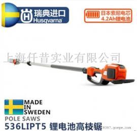 瑞典 胡斯华纳 富世华536LIPT5 高枝电锯 锂电吹风机 充电风机