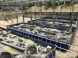海水养殖设备 水产养殖一体会过滤设备