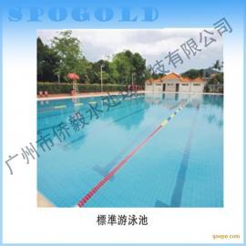承建度假村水中工程 游泳池 水疗池 气泡池 旋涡池
