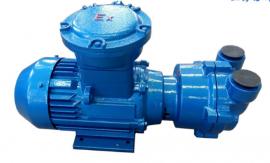 ���|304不�P�真空泵SK-1.5A 3KW-2��C防爆直�式水�h真空泵