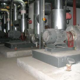 水泵噪声治理 为时代广场水泵进行减振隔振工程 噪音处理