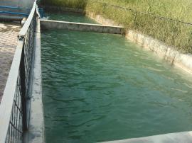 定点屠宰场污水处理设备