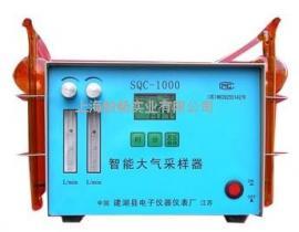 SQC-1000智能双路大气采样器 气体取样器 气体采样器 气体收集器
