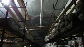 冷库专用加湿设备批发