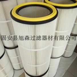 厂家直销PTFE覆膜除尘滤筒 粉末回收滤筒 除尘滤芯生产厂家