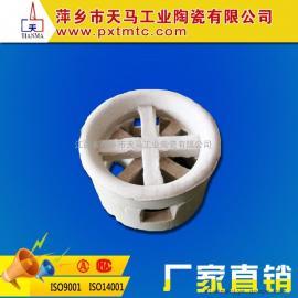 厂家直销大量供应优质陶瓷散堆填料阶梯环