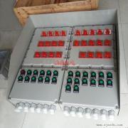 户外使用防爆配电箱IP65 户外防水防爆配电箱带防护罩