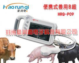7000AV升级版P09兽用便携式B超厂家,P09 参数图片招标报价