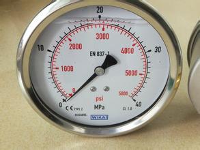 供应欧美WIKA压力表131.11.050 0 0....6000psi 1/4NP