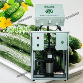 蔬菜施肥机械 大棚黄瓜自动水肥一体化设计安装简单省人工