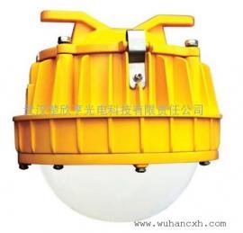 50WLED防爆平台灯 海洋王BPC8766-L50W LED防爆平台灯