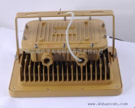GB8040紫光GB8040防爆泛光�� GB8040紫光LED防爆泛光��