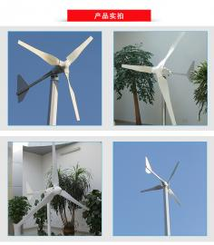 3000w小型家用风力发电机低转速永磁发电机