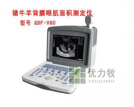 牛用B超测孕仪可以检测牛背膘厂家直接供应