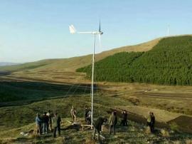 5千瓦永磁纯铜无刷发电机组小型家用风力发电机微风启动