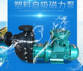 防爆工程塑料自吸磁力泵ZADL401 耐酸碱自吸泵生产厂家