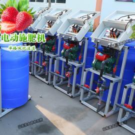 果树水肥一体化投入 经济实惠的手动施肥机草莓种植简单好操作