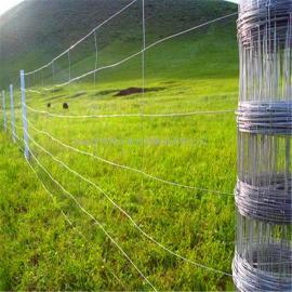 牧区草地围网牛栏网钢丝网