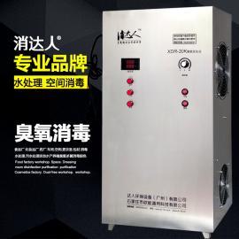 源头厂家消达人30G水产养殖工业污水纯水消毒水处理臭氧发生器