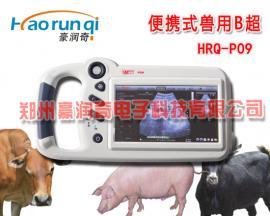 豪润奇7000AV升级版P09,老牌子老客户猪用B超厂家