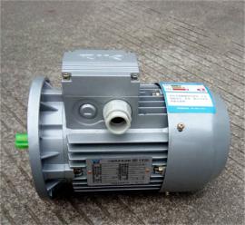 中研0.12KW紫光三相异步电机
