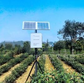 土壤墒情实时监测系统 无线土壤墒情监测系统