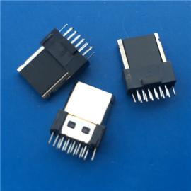 半包/LG 三星夹板公头12P 两脚插板180度全塑插头带接地USB