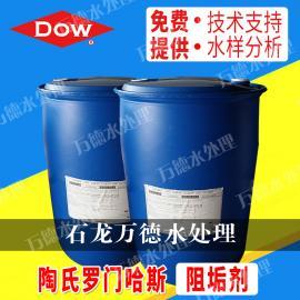 美国罗门哈斯分散剂ACUMER 5000分散剂 水处理药剂阻垢剂