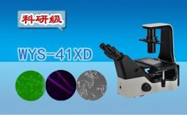 科研级三目倒置生物显微镜WYS-41XD