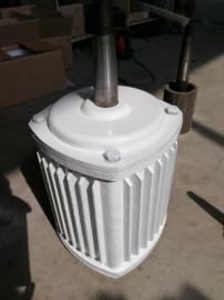 380V三相光伏风力发电机30千瓦永磁风力发电机 沿海风力发电机