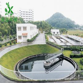 日处理100立方一体化污水处理设备