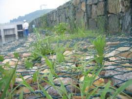 水土保持格宾笼,格宾石笼网,格宾石笼正规生产厂家