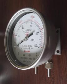 CYJ-1差压计0-10000mm WC双波纹管差压计