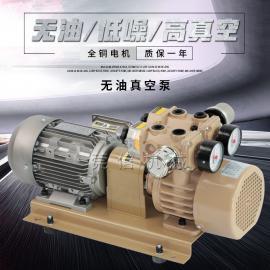 云望/宇旭/贝克WZB15-P-VB-01印刷泵无油泵滑片泵干泵碳旋片泵