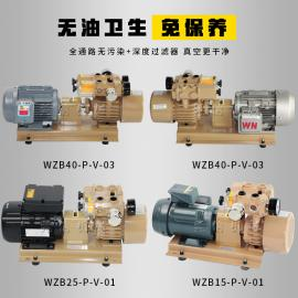 国产真空泵无油泵滑片泵WZB15-P-V-01适用于雕刻机印刷机FUJI