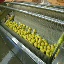 供应康汇牌1000型毛辊去皮机 土豆去皮机 生姜脱皮清洗机