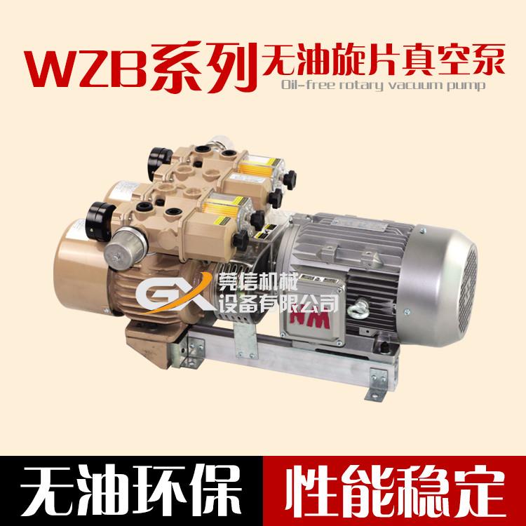 WZB80-P-VB-03云望气泵无油泵真空泵滑片泵干泵真空包装雕刻机