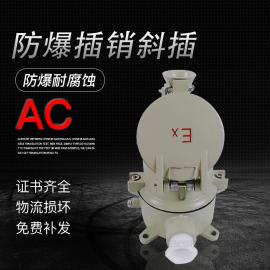 AC防爆插销16A32A63A100A防爆插接装置防爆插头插座