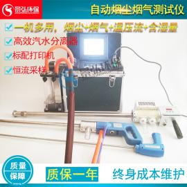 烟尘烟气采样仪烟气烟尘连续排放在线检测仪