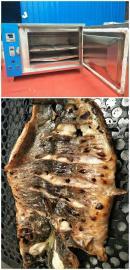 烤鱼店商用烤鱼箱专供 东华仪器