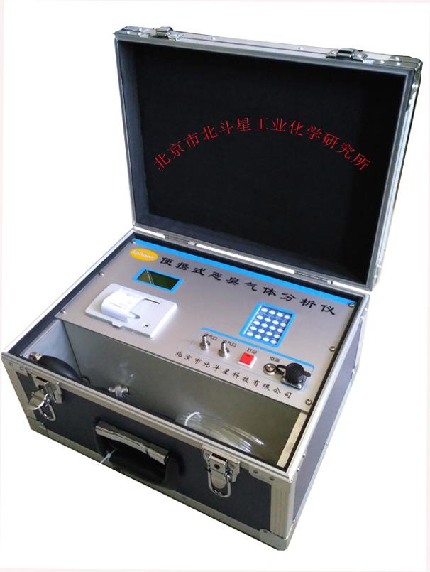 环境恶臭实时检测仪pAir2000-EFF 北斗星
